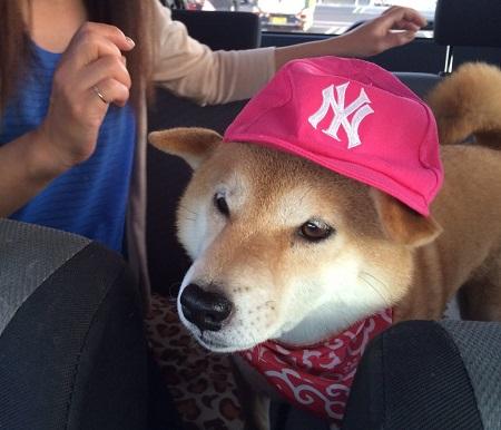 ピンク帽子b.jpg