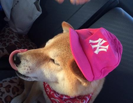 ピンク帽子e.jpg