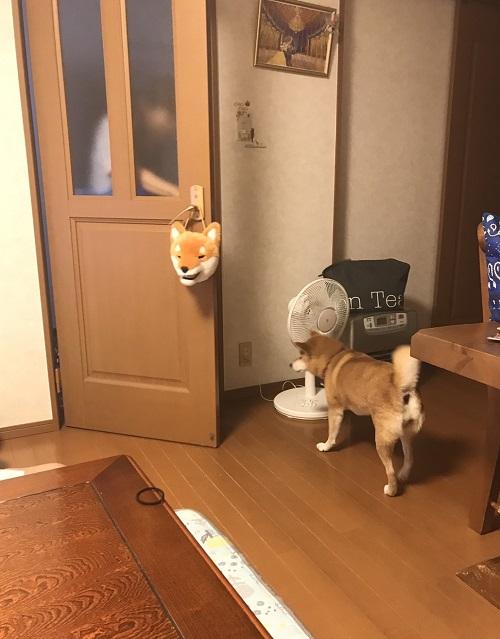 ママっ子h.jpg