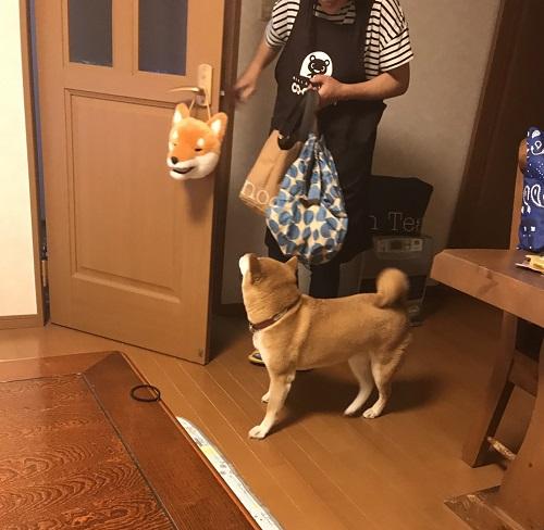 ママっ子j.jpg