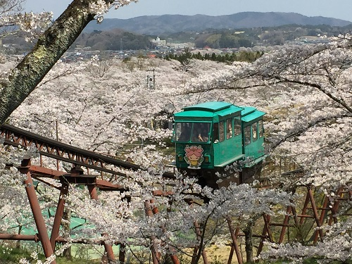 桜2章c.jpg