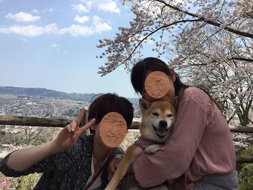 桜2章j.jpg