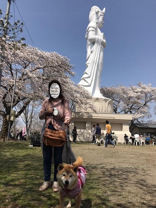 桜2章jj.jpg