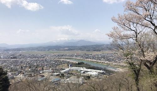 桜2章q.jpg