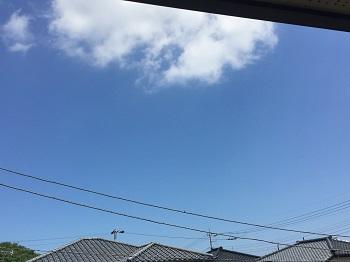 梅雨の晴れ間a.jpg