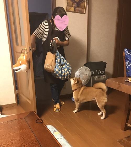 ママっ子i.jpg