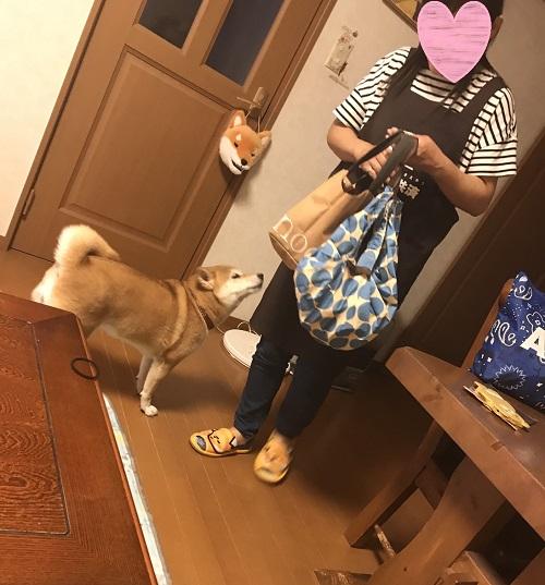 ママっ子k.jpg