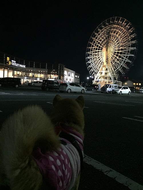 仙台へd.jpg