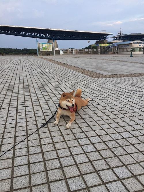 公園l.jpg