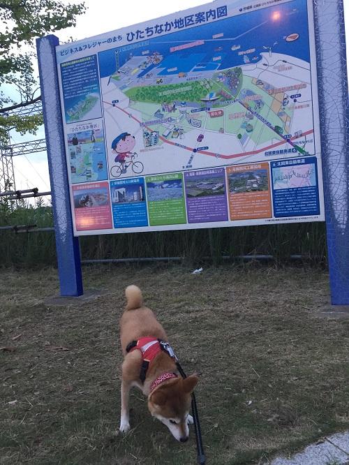 公園m.jpg