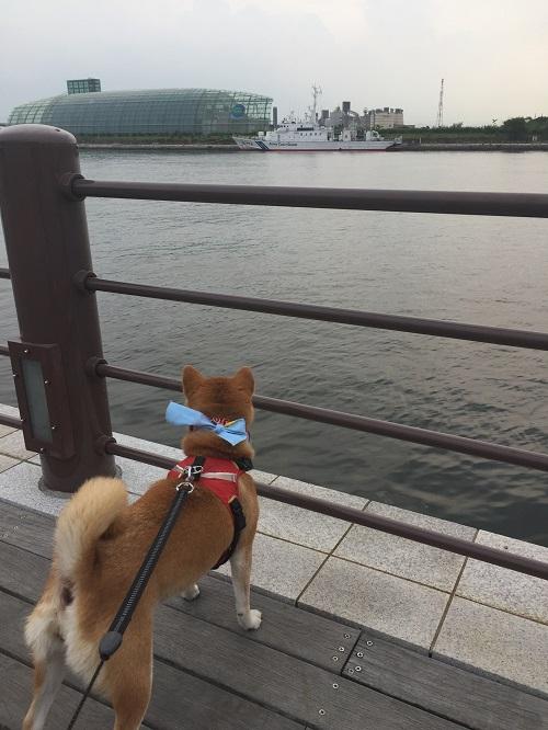 小名浜e.jpg