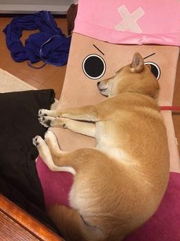 眠くて眠くてc.jpg