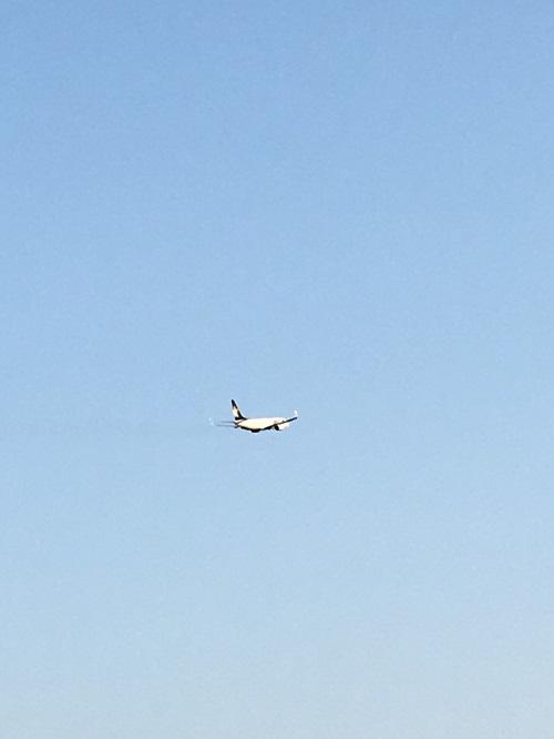 飛行機d.jpg